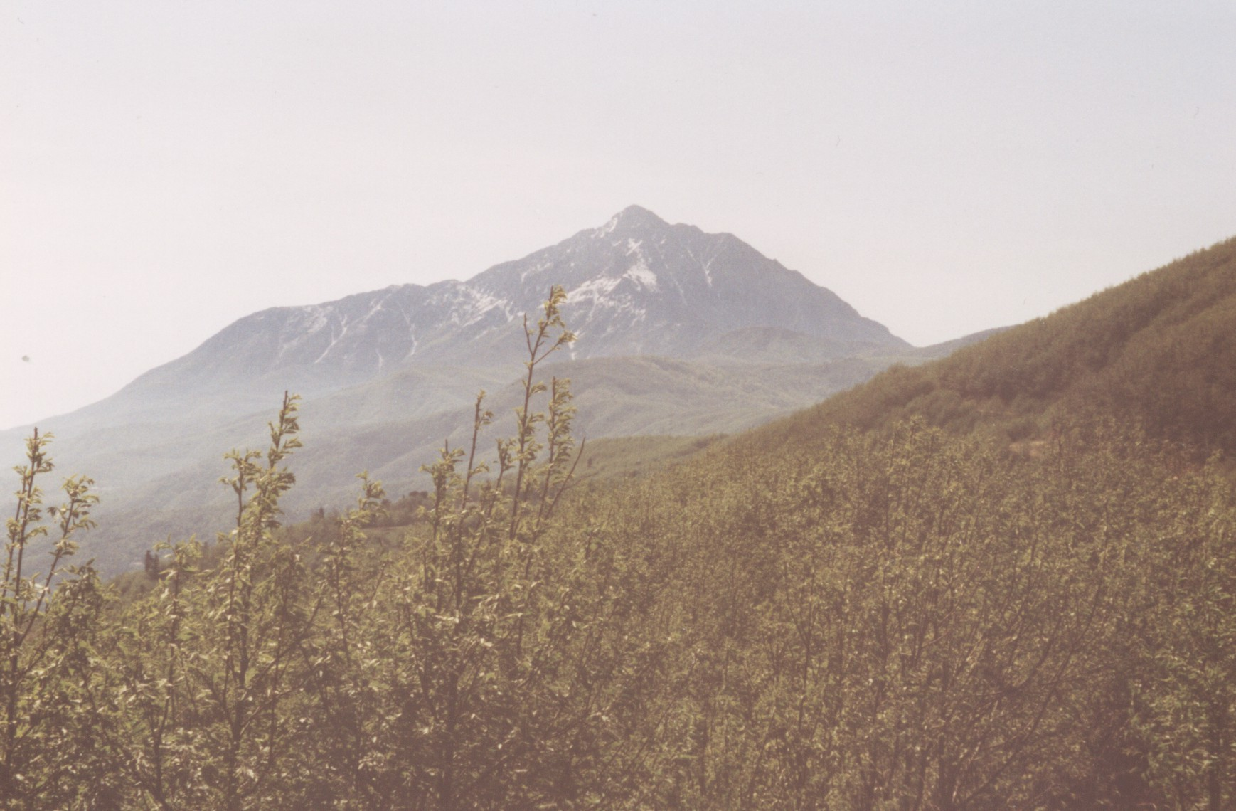 Атос, Света Гора